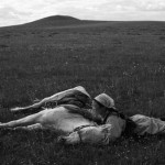 black &amp; white photograph of a young woman stroking a sleeping horse