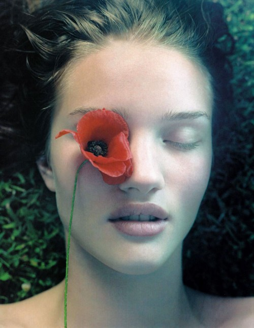 A red poppy covering one of Rosie Huntington-Whiteley's eyes