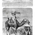 scientific american article showing gatling gun camel