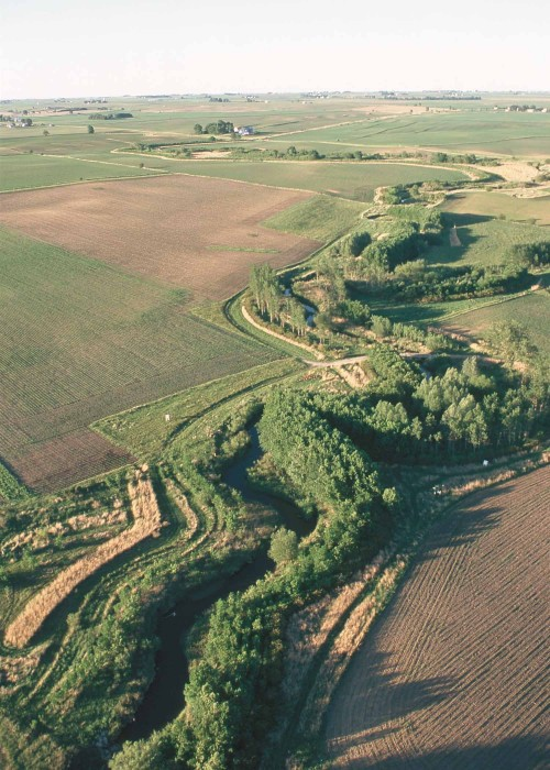 Riparian buffer on Bear Creek in Story County Iowa