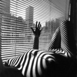 nude with shadows of venetian blinds on body