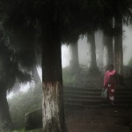 Darjeeling by Christophe Jacrot