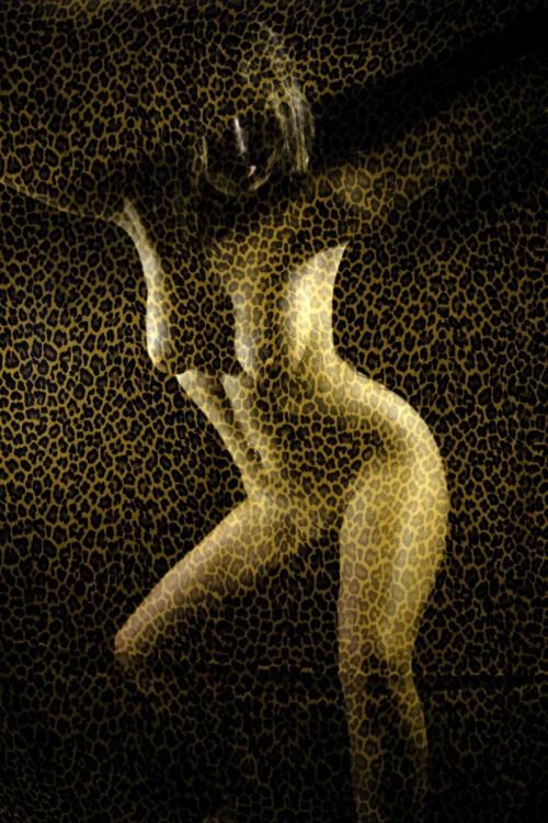 corps en transparence derrière un voile léopard