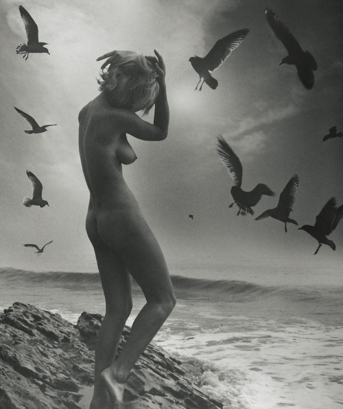 Andre De Dienes, 1944