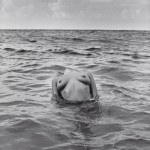 woman nude in sea by herb ritts