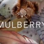 Mulberry by Tim Walker