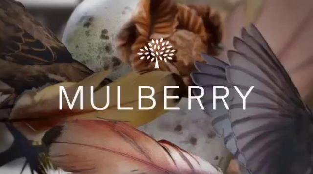 Mulberry by Tim Walker