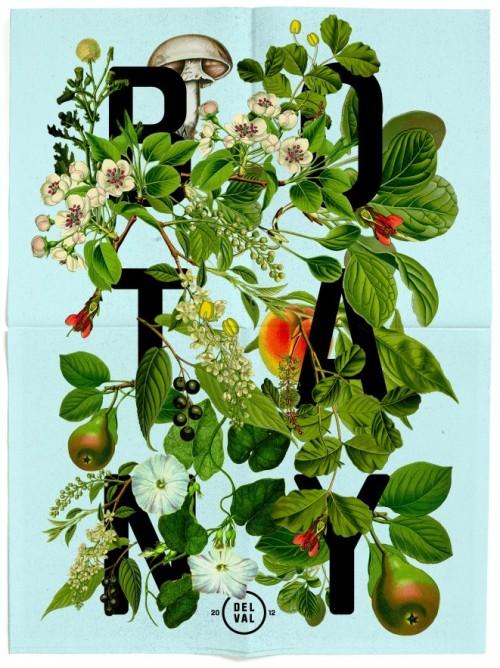 DelVal Botany Mailer : Daniel Blackman