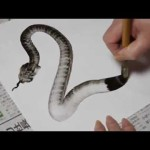 Amazing snake drawing!