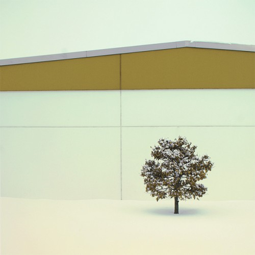 stark photograph of a tree in front of a warehouse in the snow