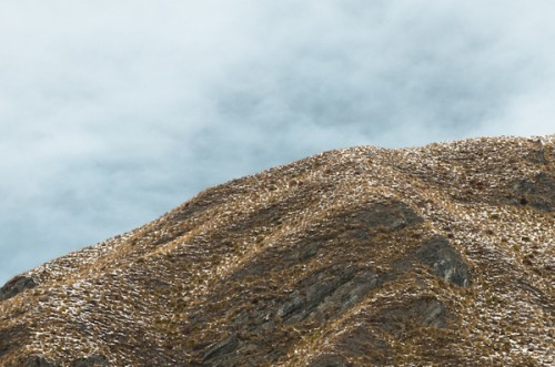 landscape photo of the side of an arid mountain