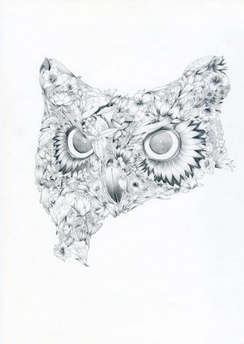 black & white illustration of an owl