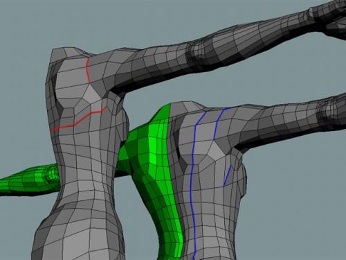 Female back 3D model edges