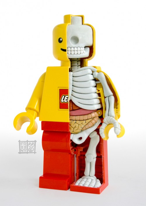 Lego figure anatomy by Jason Freeny