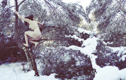 A naked woman climbing up a small tree in the snow - Annalaura Masciavè Photography